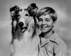 Lassie_Tommy_Rettig_Circa_1955-1