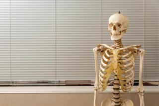 UK-school-has-funeral-for-class-skeleton-made-of-real-bones