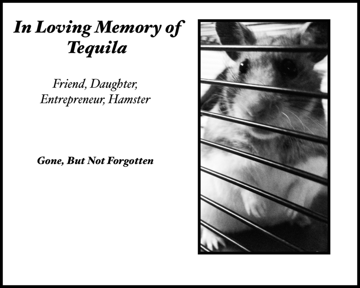 Tequila, Beloved Friend and Hamster, Died on May 2, 2016