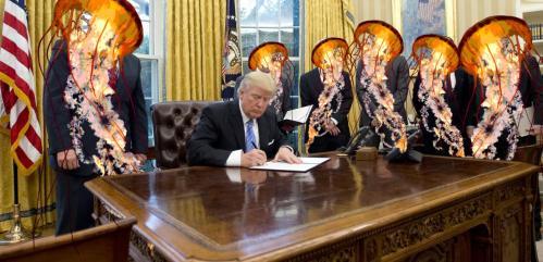president-trump-signs