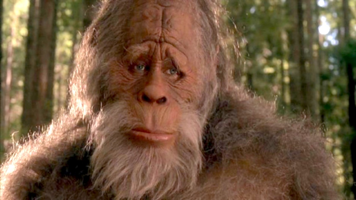 BREAKING: Man Finds Traces of Big Foot, Still Can't Find Clitoris